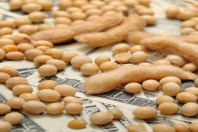 Soybeans Close Slightly Higher Friday